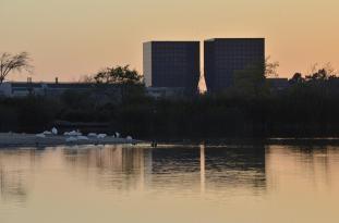 San Joaquin Wildlife Sanctuary (9)