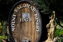 Southern California's Wine County (9)