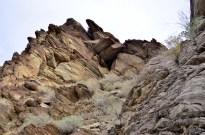 Hiking Andreas Canyon, part 1 of 2 (11)