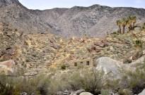 Hiking Andreas Canyon, part 1 of 2 (18)