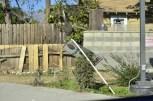Pasadena's Hangover (9)