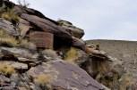 Reclaimed by the Desert (7)