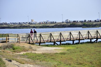 Touring the Wetlands, part 2 (9)