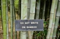 Guard of Huntington's Bamboo (2)