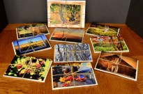 Photo Note Cards. Photos taken by SueBee