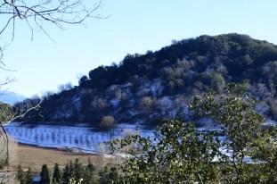 oak-glen-with-snow-part-2-7