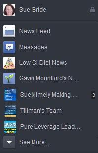 Facebook new look Sueblimely Left Sidebar