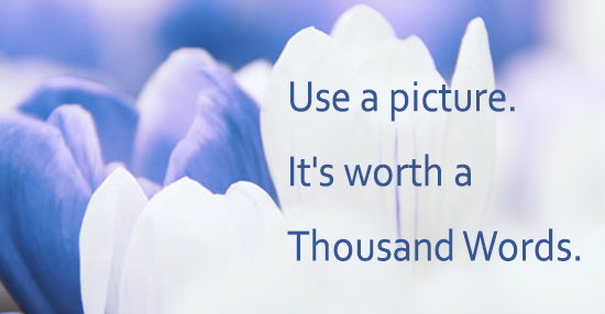 Quote about pictures