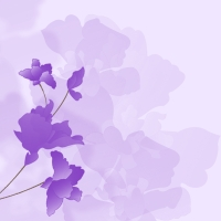 FloralCollection15