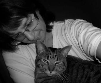 cat with owner, tabby cat