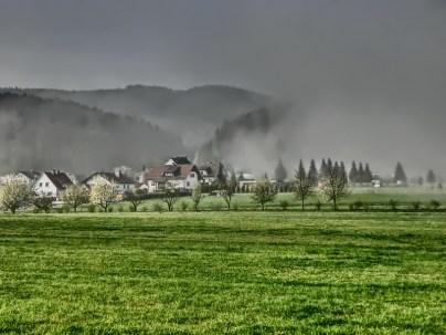 Der Nebel zaubert ganz besondere Stimmungen im Kirschblütenland
