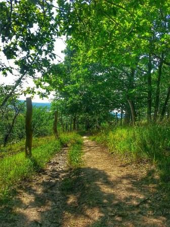 SH Trail (bekannt vom alten KILL50)