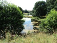A quiet spot in Hardwick Hall grounds