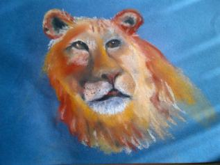 Young Lion a Quick Pastel Drawing