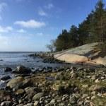 Küste Halmstad Fischen, Angeln Meerforele Dorsch