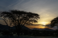 Samburu Sunrise