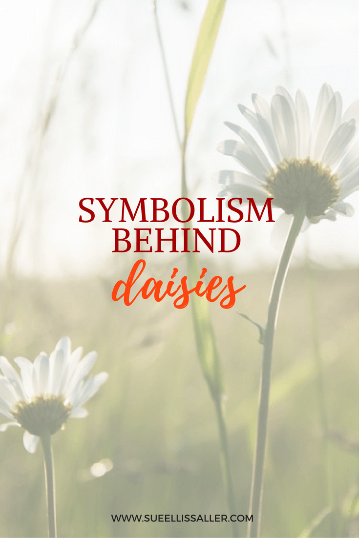 Daisy symbolism what do daisies mean sue ellis saller did you ever wonder what the flower daisy symbolizes the daisy flower symbolises simplicity izmirmasajfo