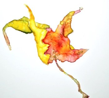Maple Leaf sketch, watercolor on Yupo, 7 x 5 inches