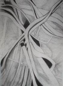 cropped willow drawing2