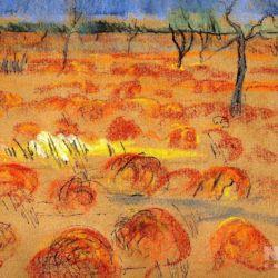 Scrub desert, Queensland