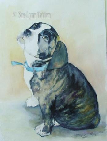 Boston Bull Terrier $99