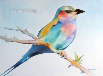 Lilac-Breasted Roller $99