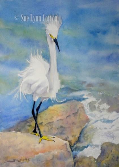 Little White Egret Fishing $99