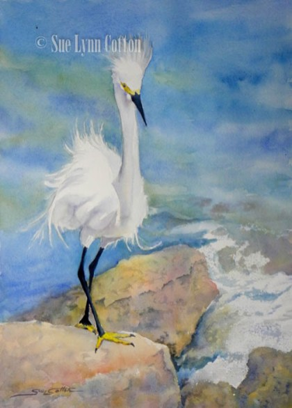 Little White Egret Fishing $99