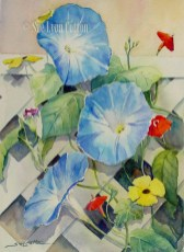 Morning Glories and More $99