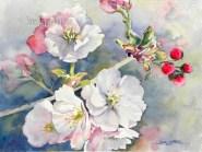 Spring Blossoms $99