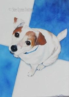 Terrier on the Tiles $99