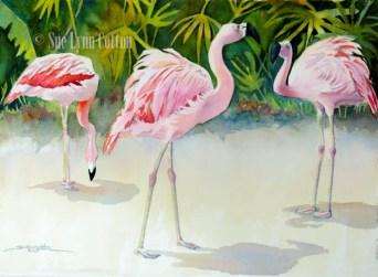 Tropical Flamingos $99