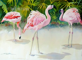 Tropical Flamingos $99