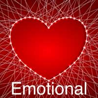 Emotional Service - Sue Maes