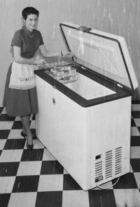 Domestic Goddess 1960