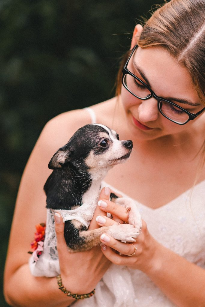 dumbo-brooklyn-wedding-with-dog-suessmoments