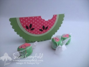 Watermelon Box with Circle Collection Framelits3-imp