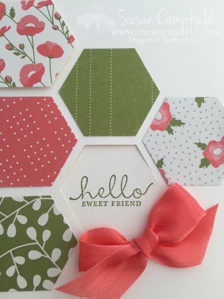 Hexagon Six Sided Sampler Pretty Petals - 3