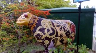 Go Herdwick sheep, Ambleside