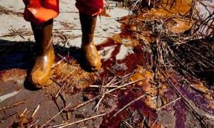 oil on the shore in Louisiana