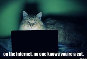 on the internet no one knows you're a cat photograph
