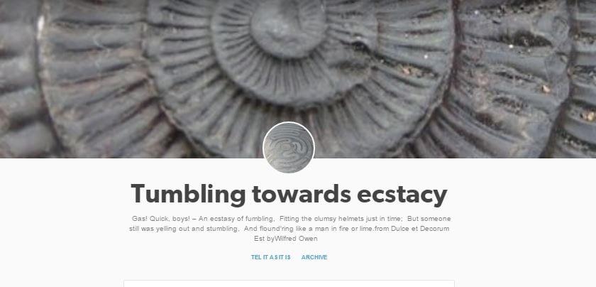 Tumblr blog home page