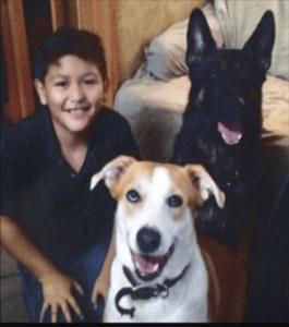 Child abuse murder victim Eduardo Posso (with dogs)
