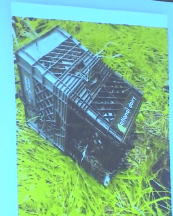 Groves trial: Inside these two milk crates, tied together by various items, was Dylan's plastic and duct-tape-wrapped body.