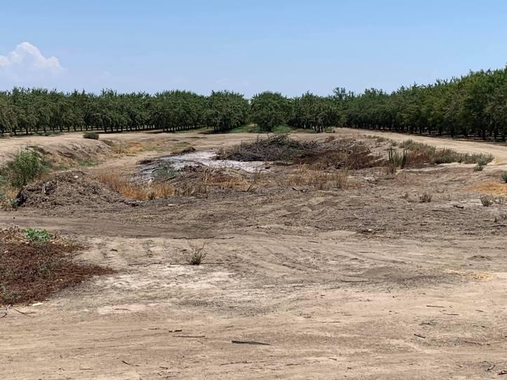Thaddeus Sran dump site crime scene