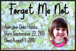 Forget Me Not: Averylee Hobbs on Suffer the Little Children Blog