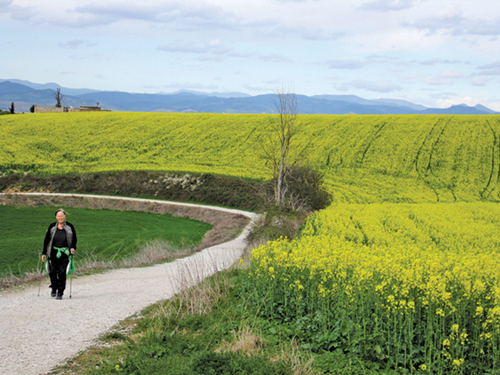 Harriet O'Halloran on the Camino de Santiago in a photo taken by her travelling companion, P.A.T. Hunt. (Credit: P.A.T. Hunt Photo)