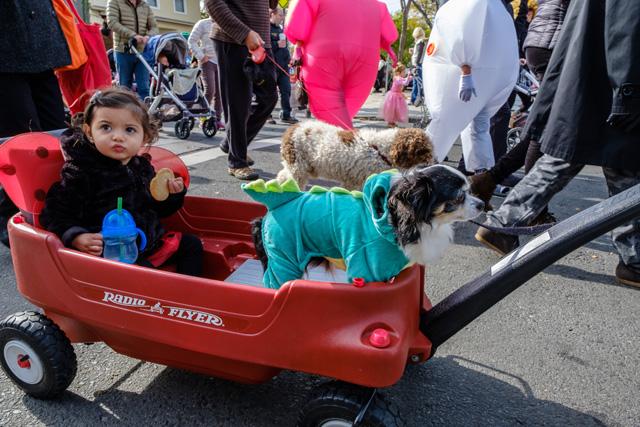 Halloween Parade in Greenport