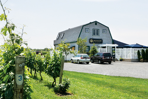 KATHARINE SCHROEDER FILE PHOTO | Peconic Bay Winery is for sale, months after its tasting room closed.