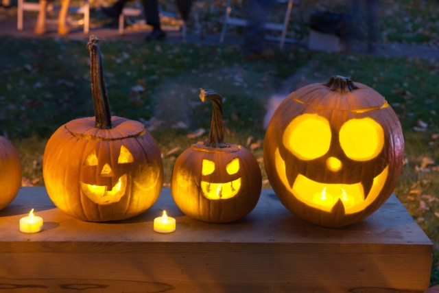 SHD_pumpkins_ss_06